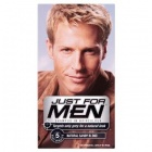 Just For Men Shampoo In Haircolour Natural Sandy Blond H-10